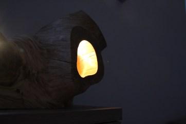 leuchte-natur