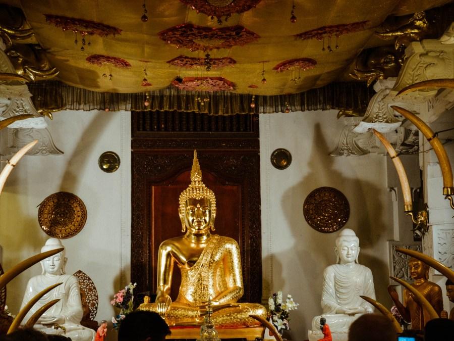 Sri Lanka Reise Kandy – Sri Dalada Maligawa / Teil 9