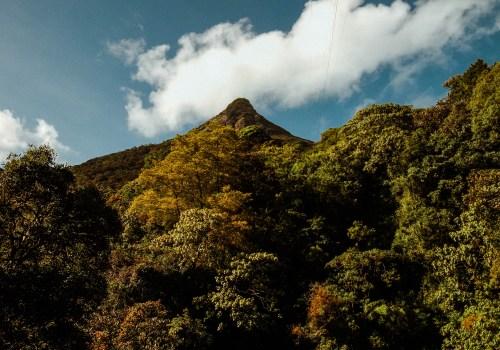 Sri Lanka Reise Ratnapura , Adams Peak / Teil 8