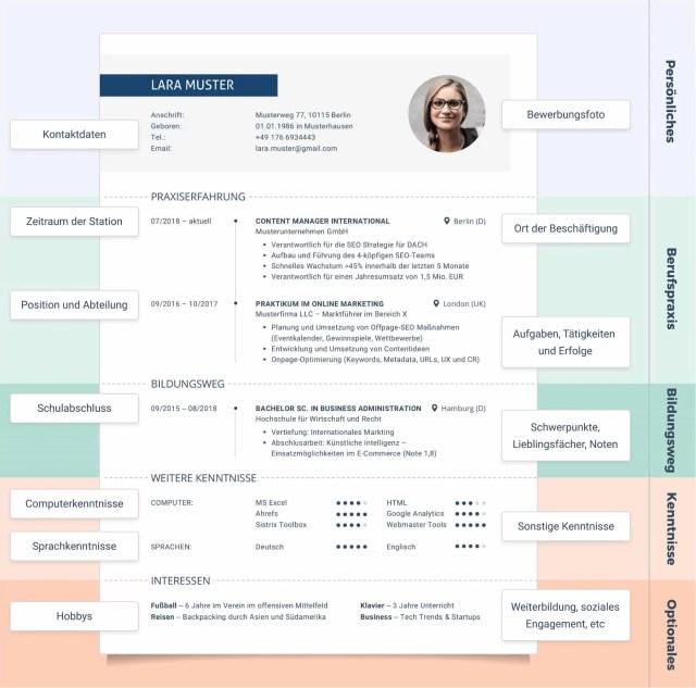 Curriculum Vitae (CV) – 11 Lebenslauf Muster & Vorlagen 11  LD