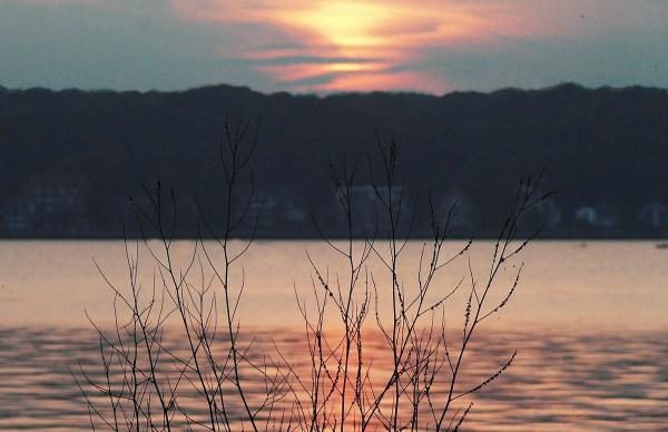 Sonnenuntergang-durch-feine-Äste (2)