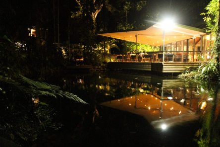 Le meilleur restaurant du Daintree, Julaymba