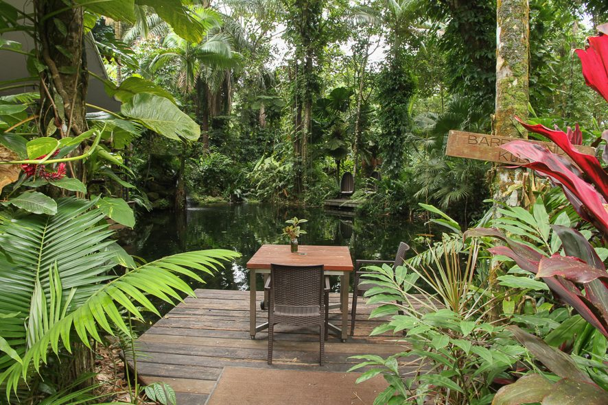 [:fr]Diner romantique au Daintree Ecolodge[:en]Romantic dinner at the Daintree Ecolodge[:]
