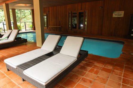 [:fr]La piscine du Daintree Ecolodge[:en]The Daintree Ecolodge swimming pool[:]