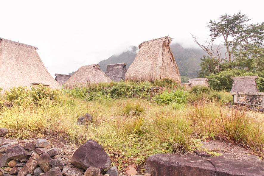 Traditional huts at the Wologai village