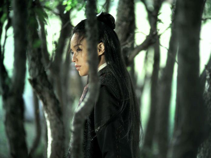 La magnifique Shu Qi - Image droits réservés