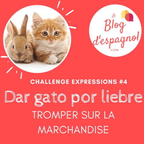 challenge expressions idiomatiques dar gato por liebre