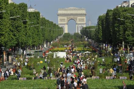 Os Champs Elysees verde