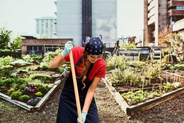 Préparer son jardin pour le printemps