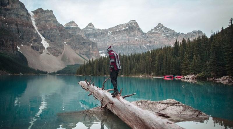 Concilier voyage et écologie est il possible ? Le blog du hérisson