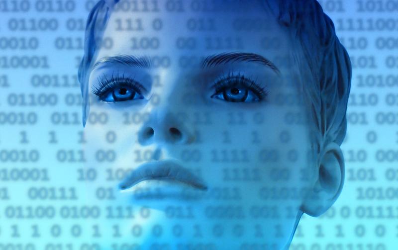 Rôle des femmes dans l'évolution du numérique - Le blog du hérisson