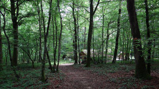 Flâner à Dole   Jura - Le blog du hérisson