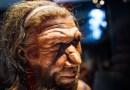 Néandertal : un homme parmi les hommes - Le blog du hérisson