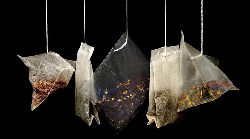 Bien choisir son thé - Le blog du hérisson