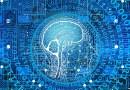 Elon Musk travaille à un cerveau connecté - Le blog du hérisson