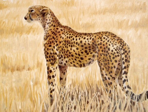 Cheeta (2003)