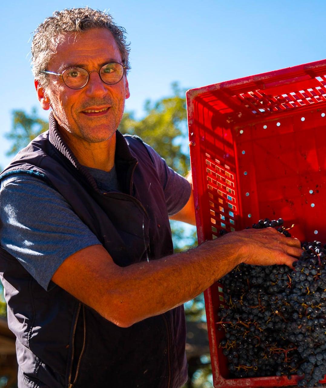 Vin biologique - Domaine du Boiron