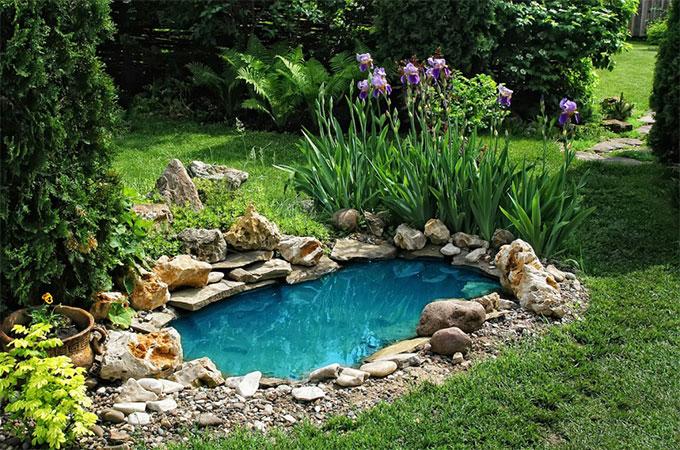 bassin de jardin comment choisir