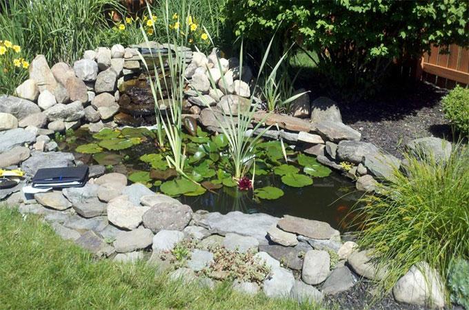 bassin preforme pour votre jardin