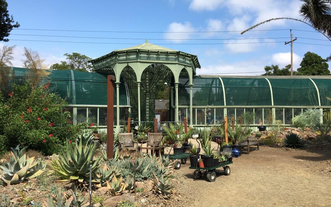 Ruth Bancroft Garden, Walnut Creek, California, USA- Ways To Make Money As A Kid