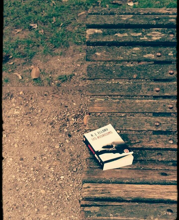 Avis de lecture sur le roman thriller les assassins de R.J Ellory