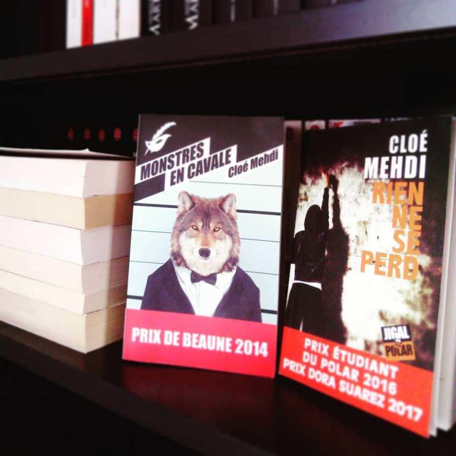 Image présentant les romans de Cloé Mehdi interview d'auteur