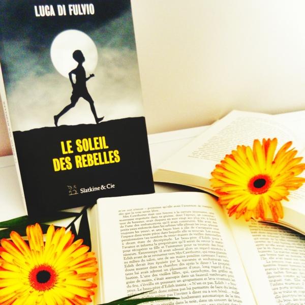 Avis de lecture sur le roman le soleil des rebelles de Luca Di Fulvio