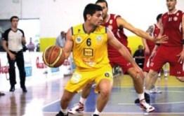 basket - Provenzano