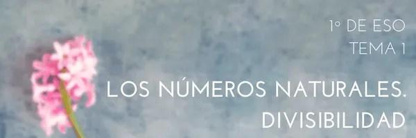 Los números naturales. Divisibilidad