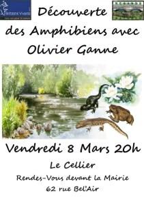 découverte des amphibiens au Cellier