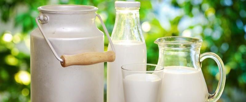 beneficios de la leche de cabra para el cancer