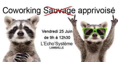 coworking-apprivoise