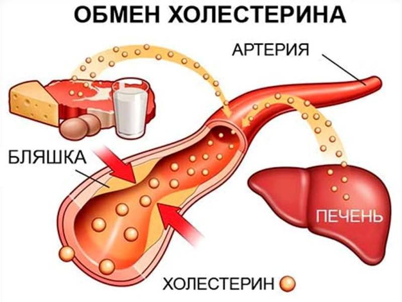 hipertenzija avižų želė emocijos ir hipertenzija