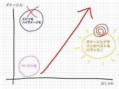 ダメージ図4