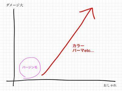 ダメージ図2