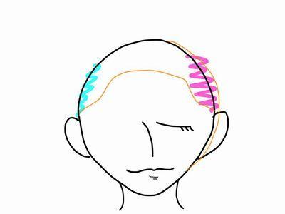 頭の形(正面2)