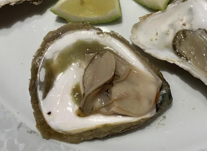 Belon Auster