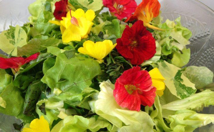 Sommersalat mit Blüten