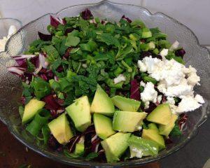 Postelein Salat mit Radicchio, Avocado, gerösteten Pecankernen, Cranberries, Granatapfelkernen, Frühlingszwiebeln und etwas Ziegenfeta.