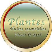 Bouton-Plantes-LCAPDM-180p