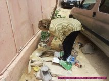 association-protection-animale-agadir-taghazout-01