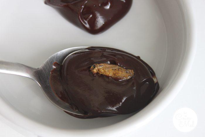 Chocolate Cricket