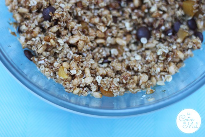 Free From Apricot and Coconut Oat Cubes Mix