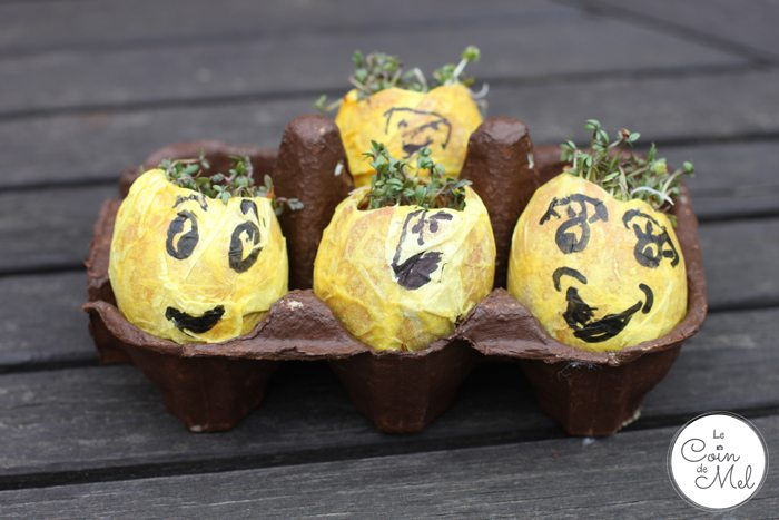 Egg Heads with Cress Hairdo