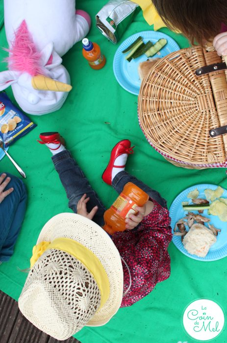 Perfect Pulled Pork Recipe - Picnic on the Decking for the Little Ones