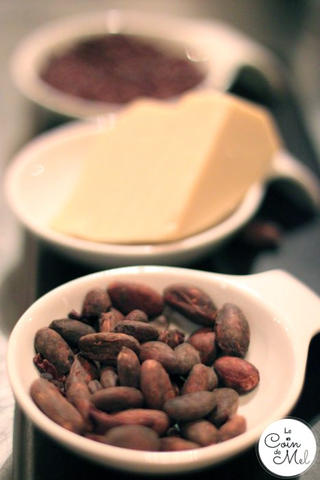 Roasted Cocoa Beans and Cocoa Butter