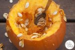 Pumpkin Festival at Willows Farm & Fun Facts