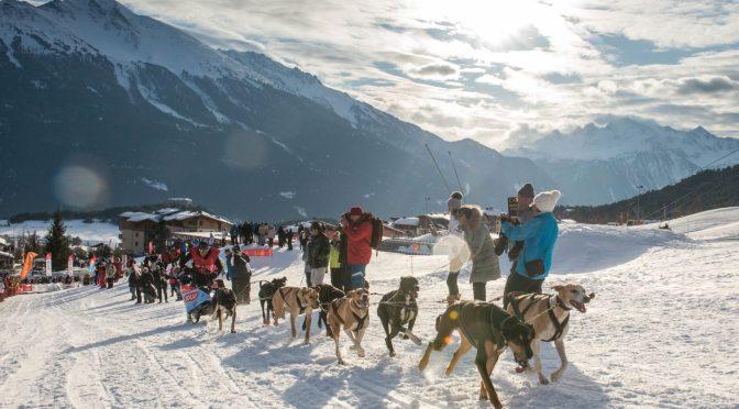 Programme et résultats de La Grande Odyssée Savoie Mont Blanc, édition 2020