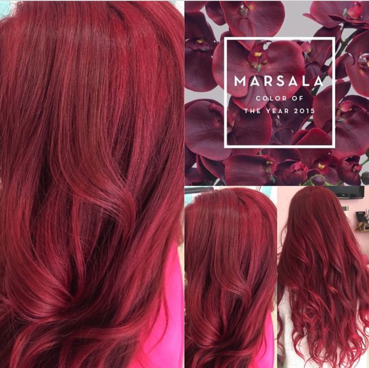 Marsala , la couleur Panetone 2015, le coloriste