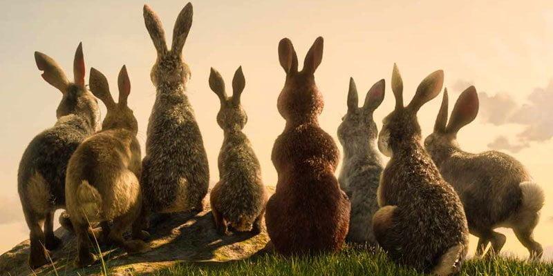 La collina dei conigli, la miniserie di Netflix e BBC